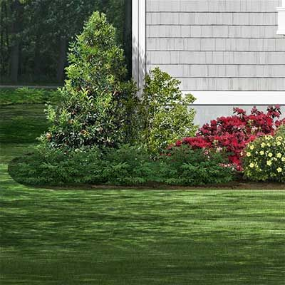 photoshop redo Foundation Plantings for Perking up a Plain Cape Cod