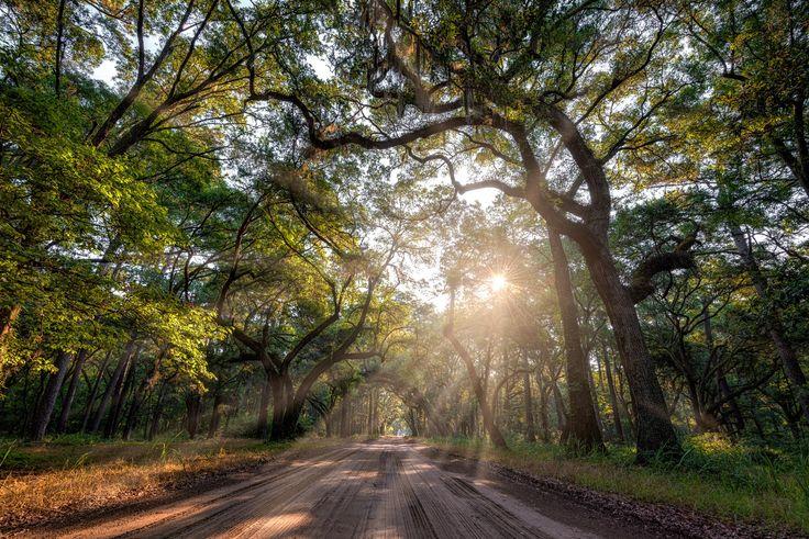 Photograph Botany Bay by Mel Myers on 500px
