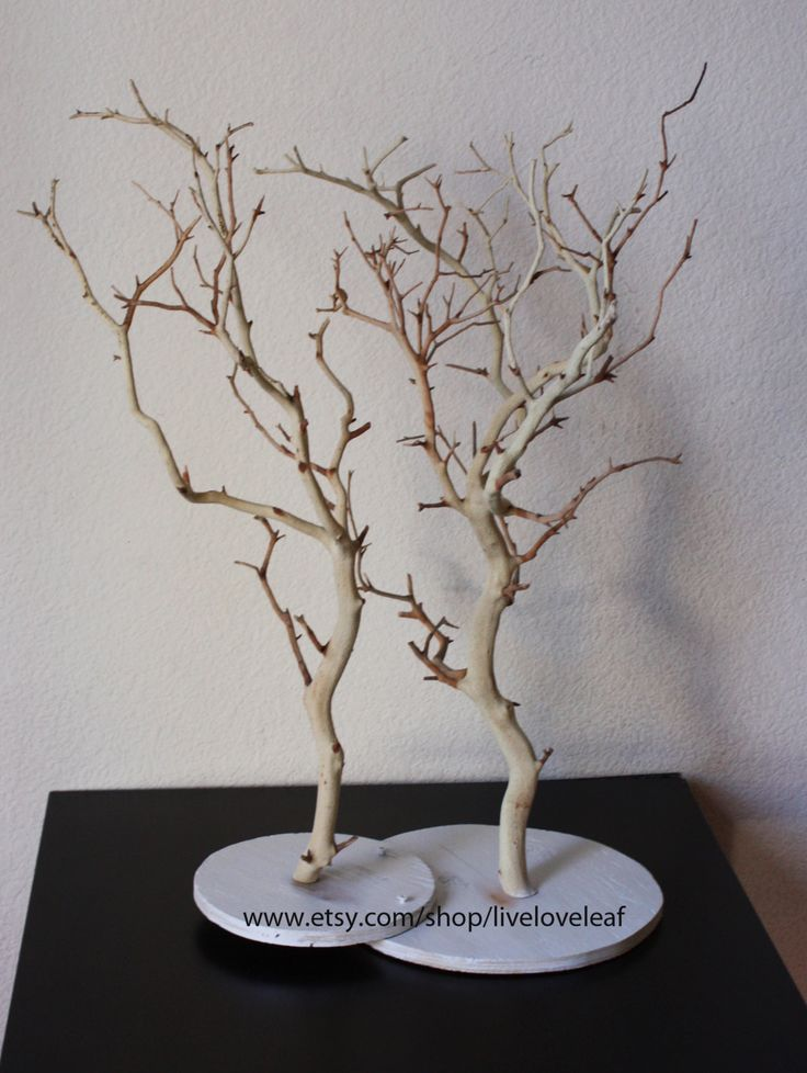 Multipurpose display tree sand blasted manzanita double for Tree branch jewelry holder