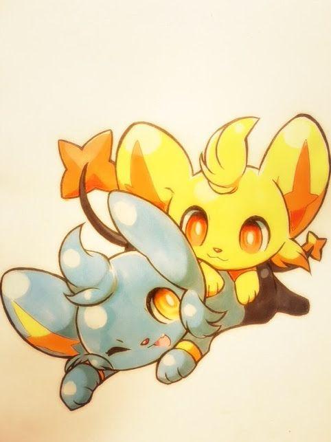 Shinx & Shiny Shinx - Pokemon