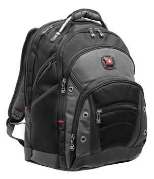 My Wenger Business Gear Backpack is the best laptop carry-on I've ever used. Lots of storage, almost indestructable, and easy to lug around an airport. Why are you still carrying a laptop bag?
