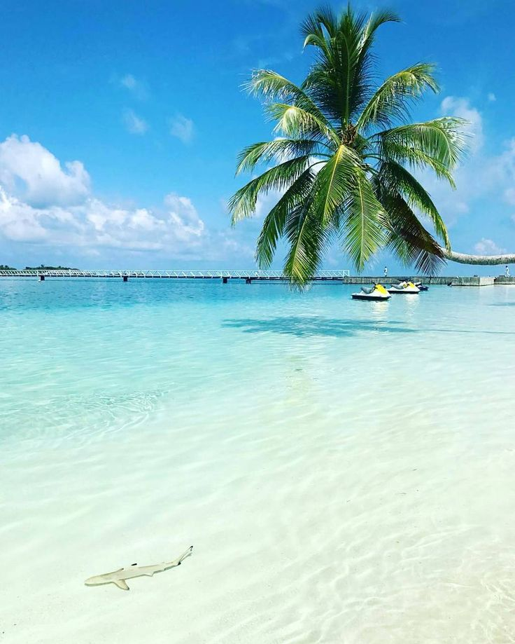 Conrad Maldives Rangali Island Maldives 26 best