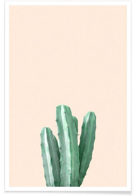 Pink Cactus als Premium Poster von Christoph Abatzis   JUNIQE