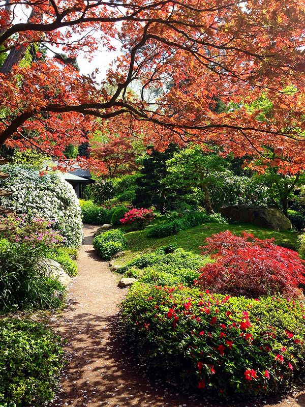 1298 best france images on pinterest destinations paris for Jardin albert kahn