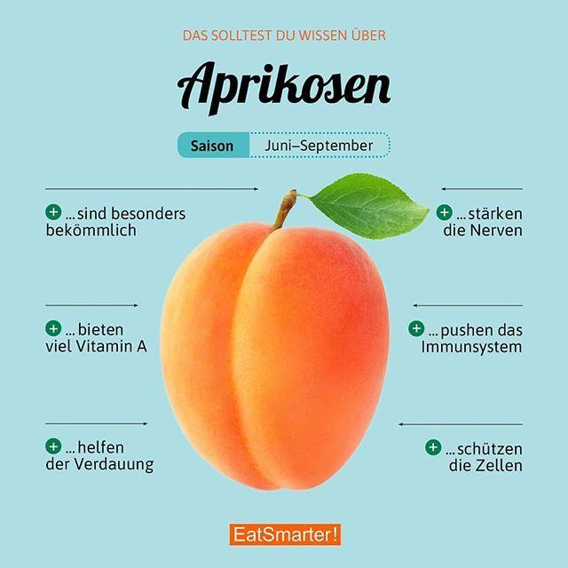 Die Aprikosen-Saison beginnt. Was macht ihr als erstes mit den Süßen? Warum di… – EAT SMARTER