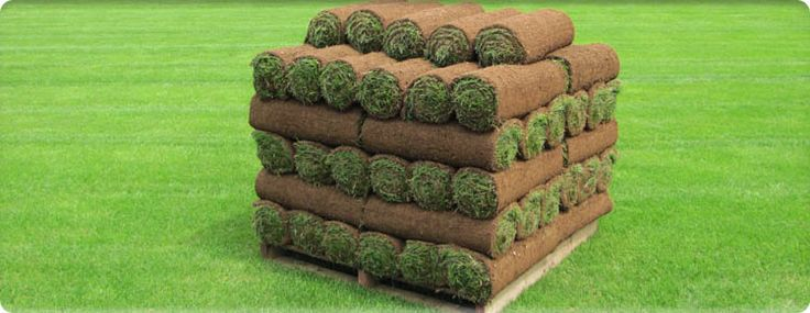 Turf Prices - Buy Turf Online  Our garden approximately 36sq.m including delivery £139.80