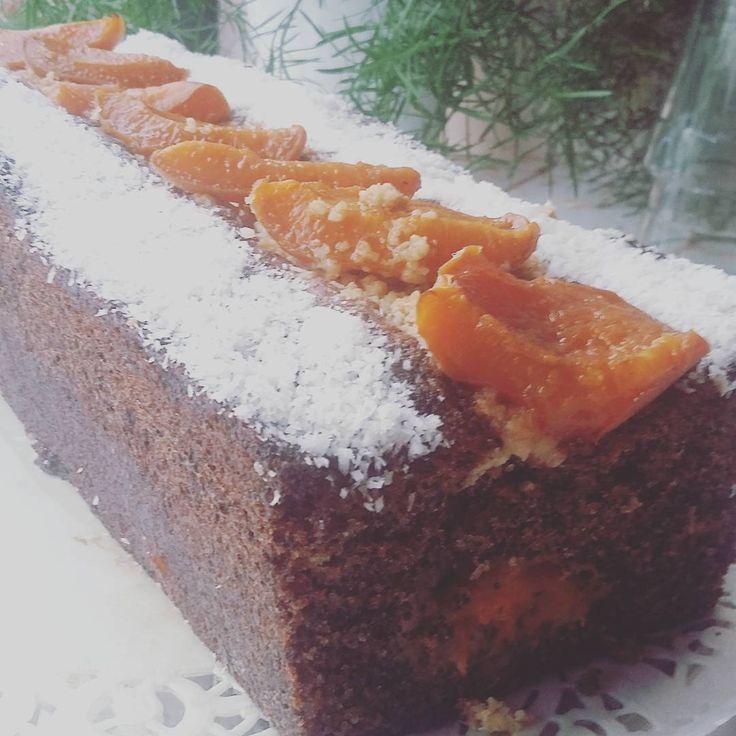 Aujhordui   Cake pavot - coco - abricot et miel de dattes