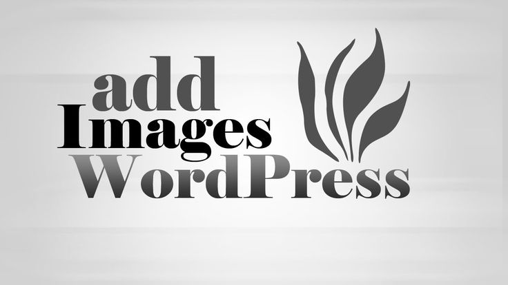 How to upload, #insert, display #Images in #WordPress post