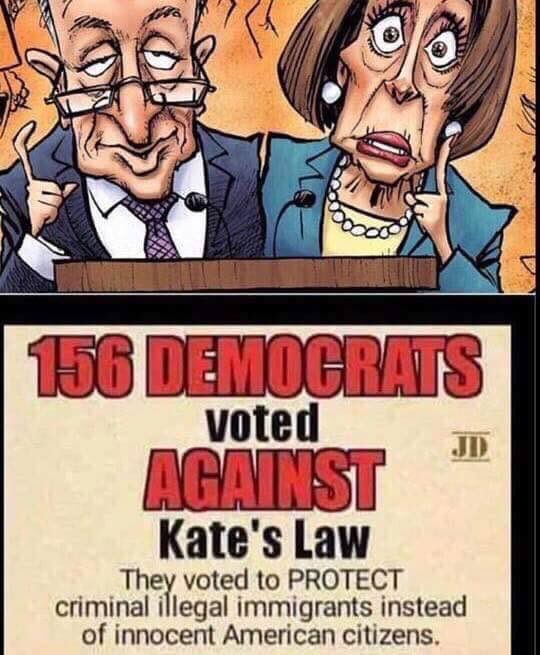 156 Democrats Voted AGAINST Kate's Law - Let that sink in...