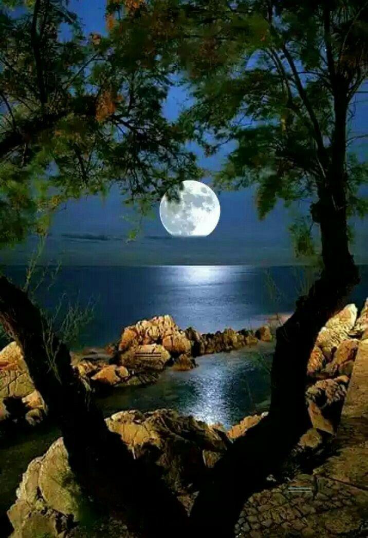Resultado de imagen para paisajes de noche