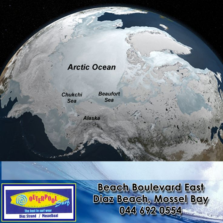 Did you know during winter the Arctic Ocean is almost completely covered in sea ice. #ocean #winter #didyouknow