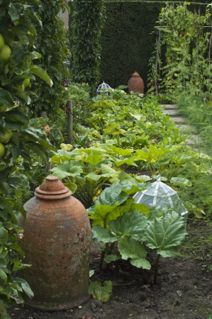 Terracotta forcing pots and glass cloches in the poatger style garden at Woolbeding House, West Sussex