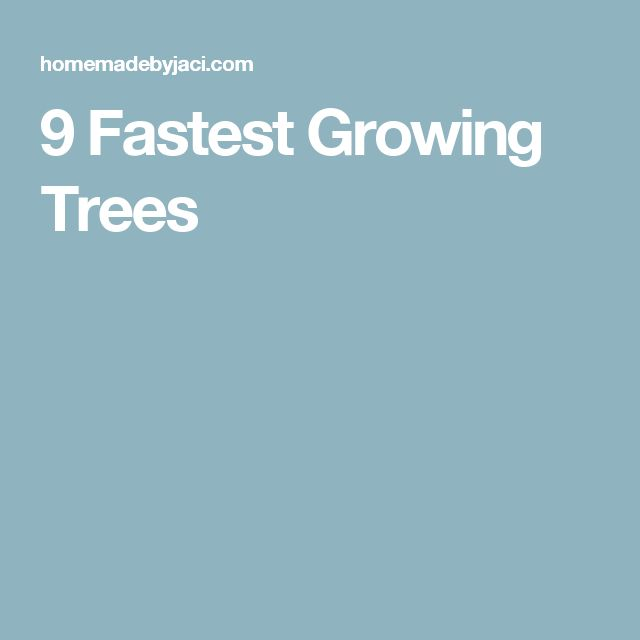 9 Fastest Growing Trees