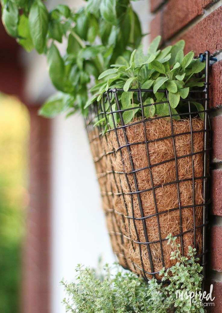 DIY Vertical Herb Garden | inspiredbycharm.com