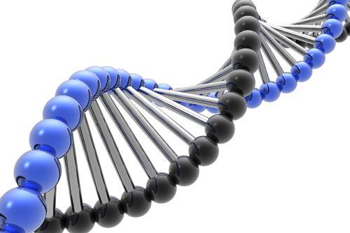 Análise de mutações baseadas no 23andme com foco na suplementação para a otimização do organismo