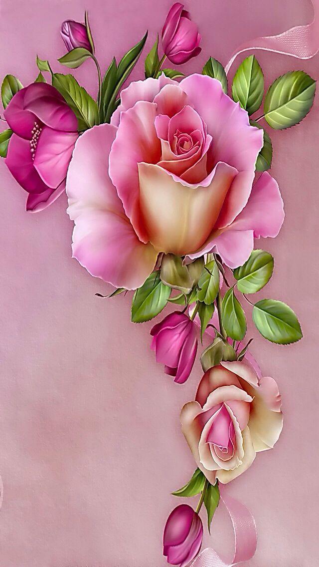 Pink rose 2: Pink rose 2