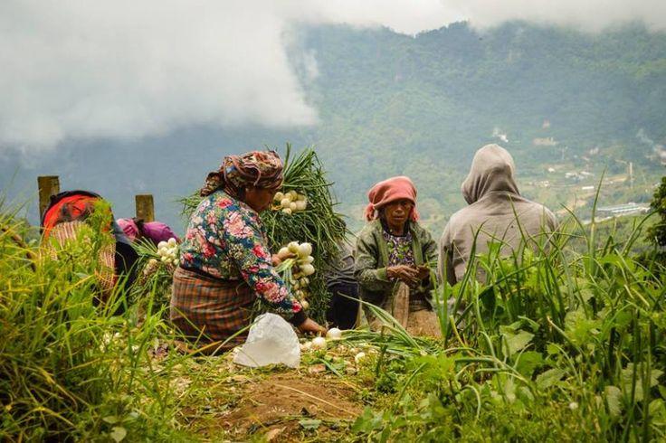 Discover Quetzaltenango, A beautiful Mayan Town
