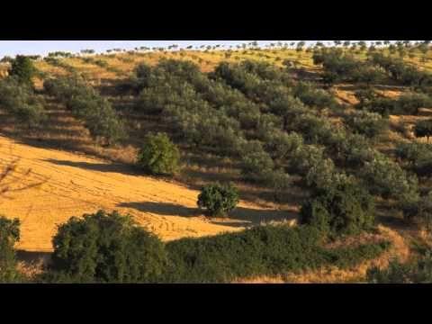 #nature, #food, #life, #farm, #Abruzzo, #Italy