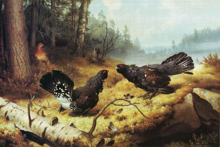 Ferdinand von Wright - Taistelevat metsot 1886. http://www.ateneum.fi/fi/taistelevat-metsot-avain --> keskustelukysymyksiä http://www2.hs.fi/extrat/kulttuuri/pdf/Kaski_380x525_web_uusi.pdf --> kuvia, tekstiä. Maalausta pidetään yhtenä taiteilijan pääteoksista. Lintujen kuvaaminen oli suosikkiaiheita lapsuudesta asti. Sommittelun pohjana on kultainen leikkaus. Von Wright oli teosta maalatessaan iäkäs ja kärsi halvauksista. Taistelevat metsot lienee myös Suomen kopioiduin teos.