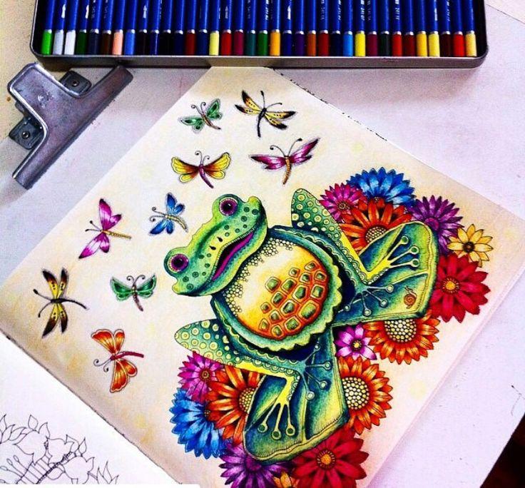 Frog Enchanted Forest Sapo Floresta Encantada Johanna Basford Adult ColoringColoring BooksEnchanted