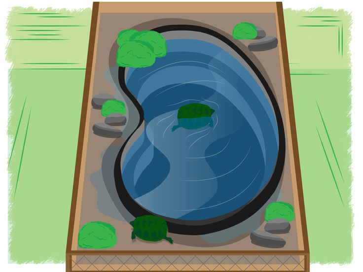 8 best images about diy indoor turtle pond on pinterest gilbert o 39 sullivan popular and Diy indoor turtle pond