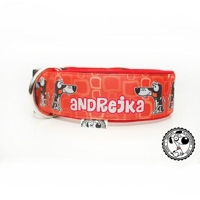Obojek se jménem | Collar with name #andrejka #collar #collarwithname #orange #goodsfordogs #byblackberry #obojek #obojeksejmenem #oranzova #vecipropsy #odblackberry #customized #blackberrycollars #new #novy #nazakazku #obojkyblackberry