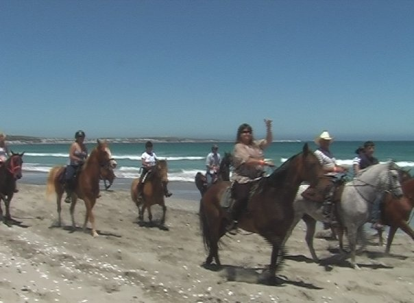 Beach rides in Paternoster