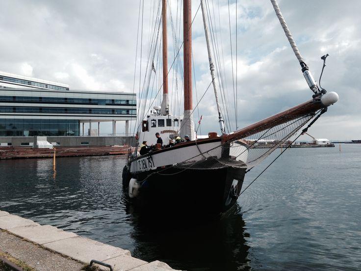 Aarhus Havn - DK, 2014: Svartlycka med Navitas i baggrunden