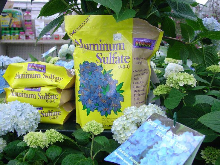 Сульфат алюминия для подкисления почвы и окрашивания цветов гортензий крупнолистных