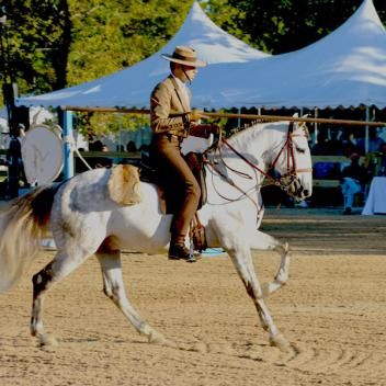 """Combine the breathtaking excitement of a speeding horse, the powerful elegance of dressage, and the sheer complexity of maneuvering obstacles on horseback and you've got Working Equitation, or WE, one of the fastest growing disciplines in equine sport. Mix that with an international line-up of competitors riding in a beautiful venue for more than $100,000 in prize money and you had me at """"WEeeeee."""" I am NOT going to miss the 2016 Haras Cup presented by Haras Dos Cavaleiros, the premier…"""