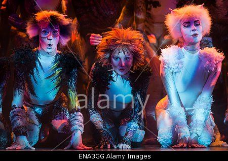 epa04723253 Cast members from the musical production of 'Cats' from London perform during a press presentation of the show, at the Mogador theatre in Paris, France, 27 April 2015. Since its debut in 1981, the musical 'Cats' has risen as one of the most popular an longest-running stage shows in the world and will soon open in Paris on 01 October.  EPA/IAN LANGSDON Stock Photo