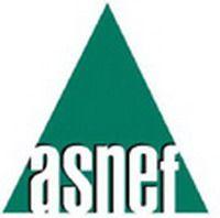 Solicitar Créditos Rápidos Con ASNEF Y Sin Papeleos