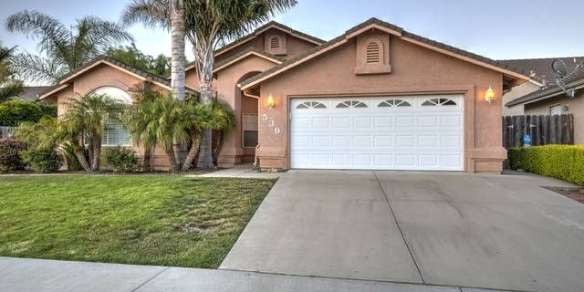 arroyo grande mature singles Large lot features fenced front & private backyard filled with mature fruit trees and a  perfect arroyo grande family home remodeled single level with open .