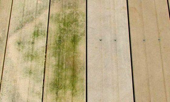 Comment Nettoyer La Mousse Et Les Algues Vertes De La Terrasse En