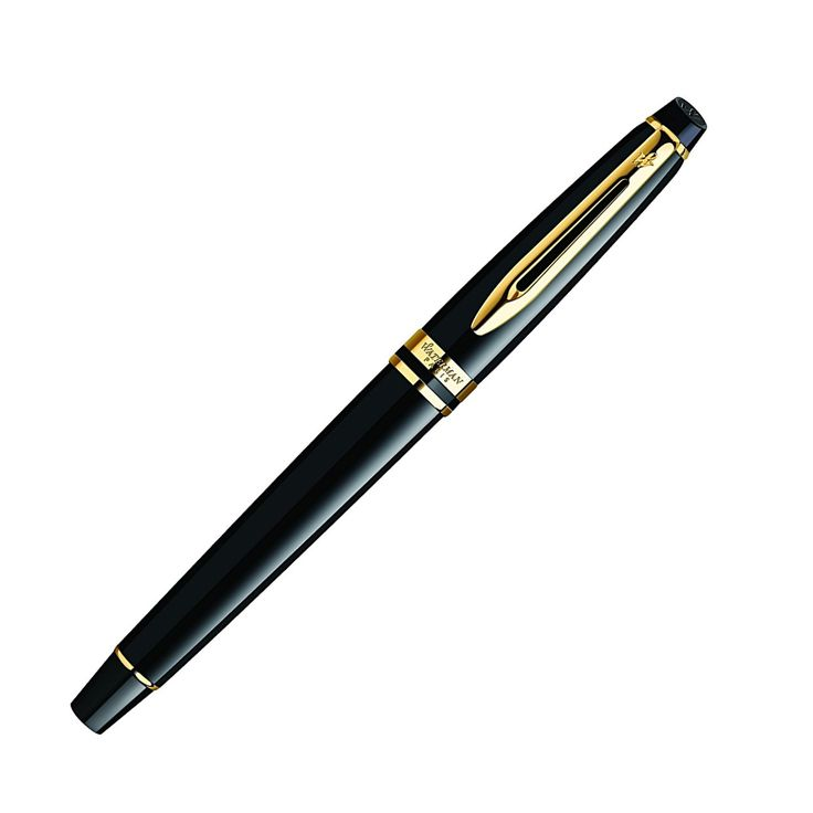 Waterman Fountain Pen Expert New Generation Black Gold Trim Fine Point