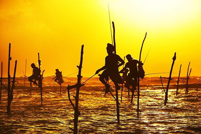 Pêcheurs au Sri Lanka - Crédits : Chalabala. http://www.lonelyplanet.fr/article/conseils-et-bons-plans-pour-un-voyage-au-sri-lanka #Srilanka #voyage #pêcheurs