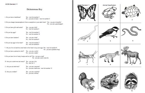Here's a dichotomous key activity on animals. | Classification ...