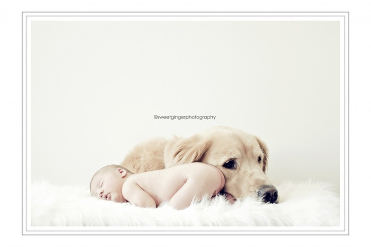 by Sweet Ginger Photography. so adorable!