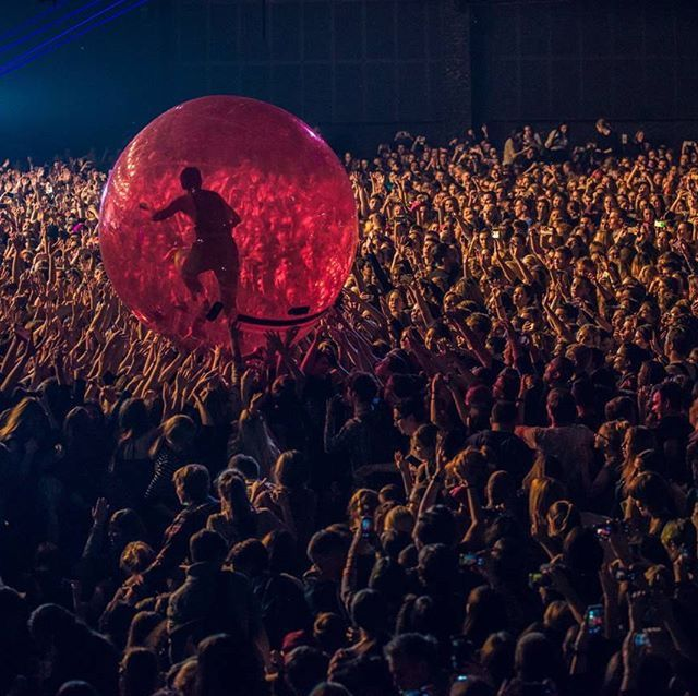 i would cry if i was in the pit and got to touch the hamster ball