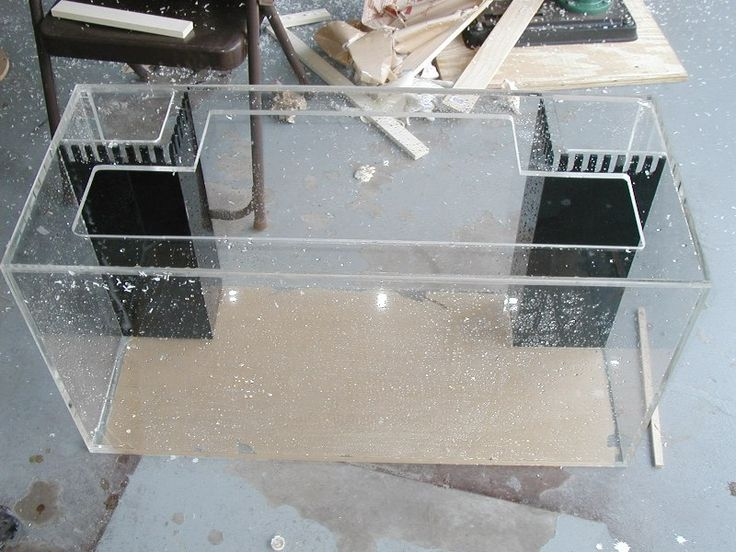 Diy acrylic tank aquaria pinterest acrylics for Diy fish tank decor