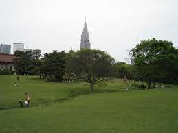 代々木公園 - Yoyogi park. Like Central park in NY.