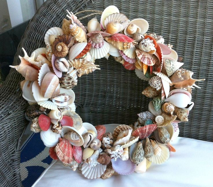 408 best beach decor images on pinterest shells beach for Large seashells for crafts