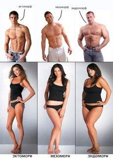 Musclestaff спортивное питание в Украине: Тип телосложения. Советы по питанию и тренировкам