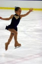 About.com about figure skating