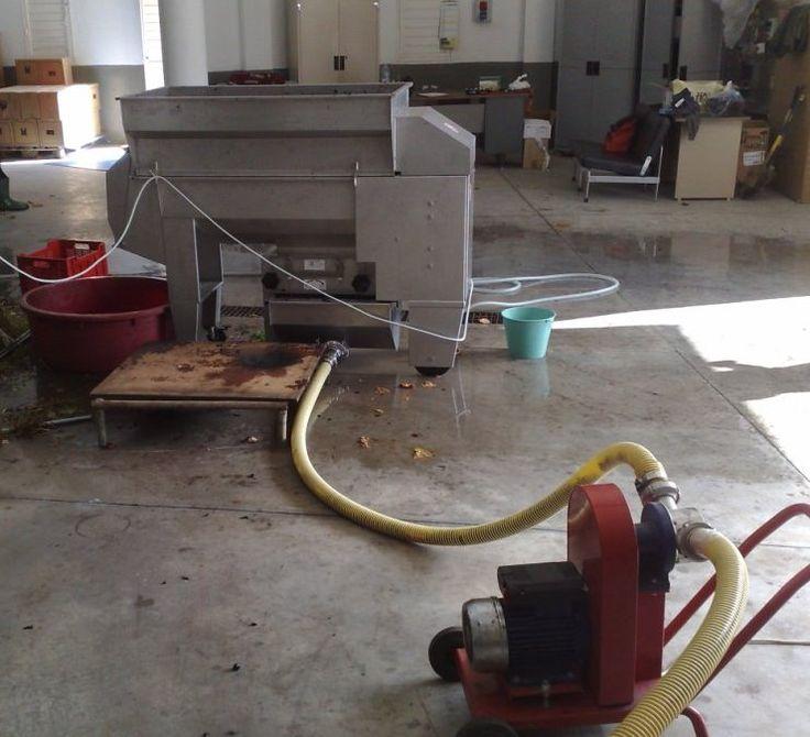 Despalilladora Lugana 2  + estrujadora + tolva conectada a bomba de pasta