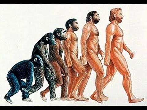 Addicting Info – W.Va. Lawsuit Claims Evolution Is A 'Religion' That Violates Students' Freedumbs (VIDEO)