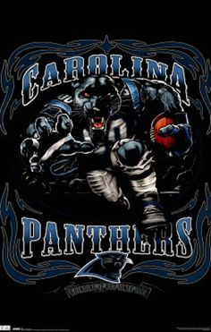 Carolina Panthers on Pinterest | panthers, cam newton and bank of ame…
