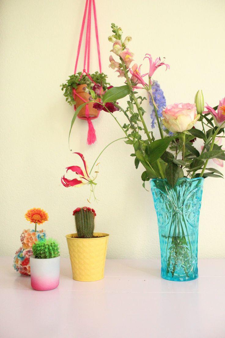 Urban Jungle Bloggers: Plants & Flowers by @zjojes