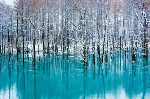 Discover fantastic Japan | JAPAN Monthly Web Magazine