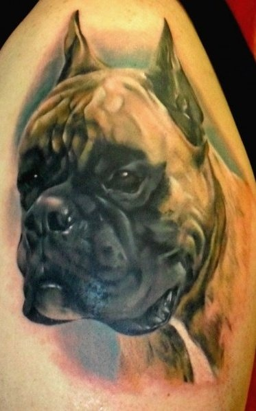 38 best hyper realistic tattoos images on pinterest for Italian warrior tattoos